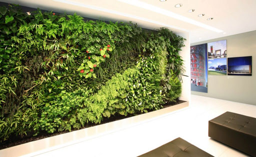 Living Walls | Biophilia Office Design | Greenery | Workplace Design | Office Design | Sussex | Surrey | Hampshire | London | Kent