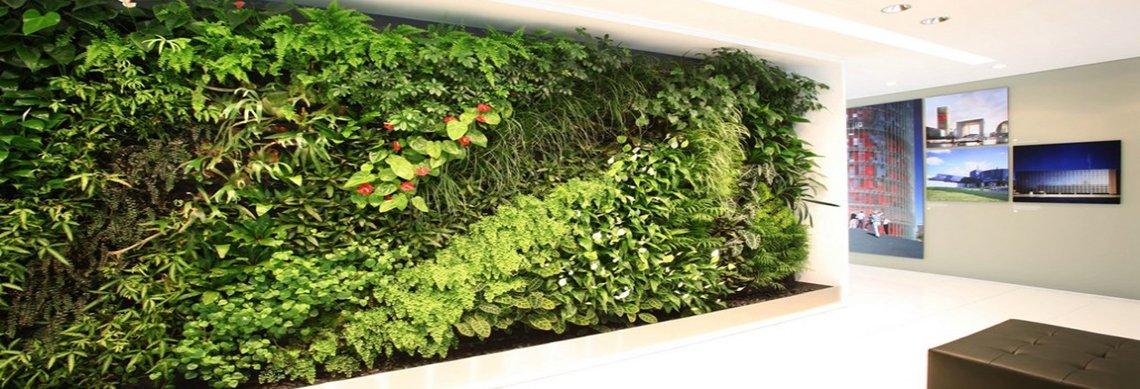 Natural Green Wall | Living Walls | Plants | Biophilic Design | Biophilia